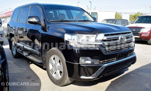 Buy Import Toyota Land Cruiser Black Car in Import - Dubai in Malampa