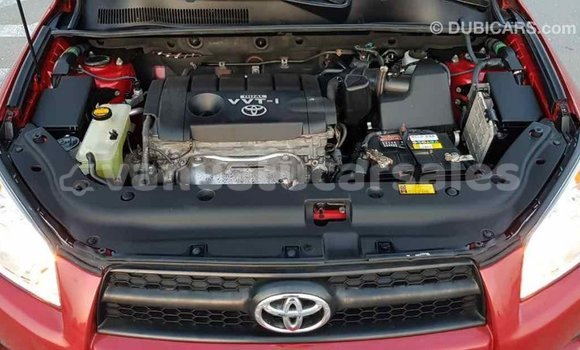Buy Import Toyota RAV4 Red Car in Import - Dubai in Malampa
