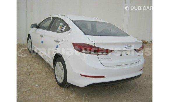 Buy Import Hyundai Elantra White Car in Import - Dubai in Malampa