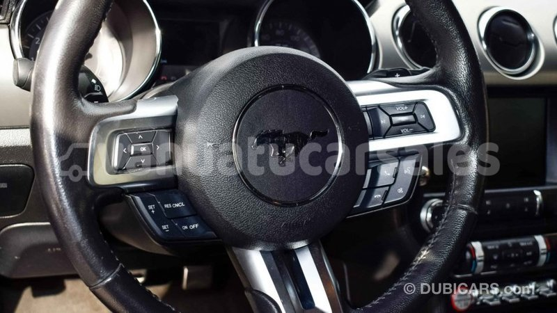 Big with watermark 49279433 f50e 4dc4 af81 75b9778bb34d
