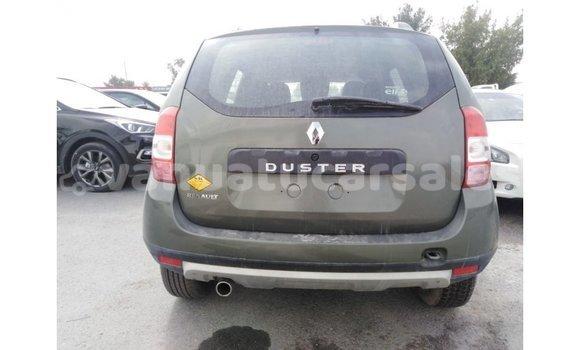 Buy Import Renault Duster Green Car in Import - Dubai in Malampa