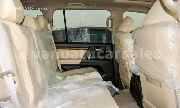 Buy Import Toyota Land Cruiser Other Car in Import - Dubai in Malampa