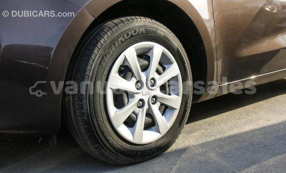 Buy Import Kia Rio Brown Car in Import - Dubai in Malampa