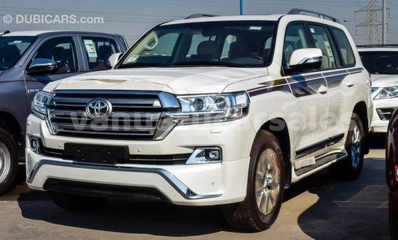 Buy Import Toyota Land Cruiser White Car in Import - Dubai in Malampa