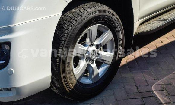 Buy Import Toyota Prado White Car in Import - Dubai in Malampa