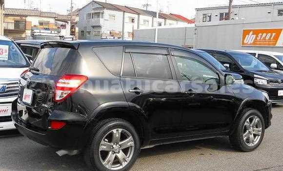 Buy Used Toyota RAV4 Other Car in Norsup in Malampa